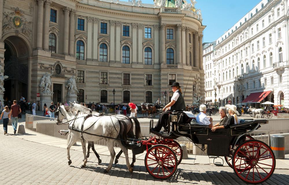 модели туры из санкт петербурга в вену этой статье поможем